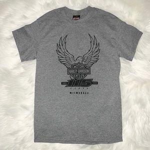 HARLEY DAVIDSON Men's Gray T-shirt Size Small